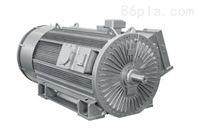 LOHER 西门子 罗尔 高电压电机 发生器